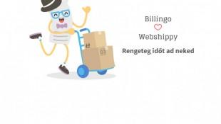 Brutál hatékony webáruházra vágysz? Itt a Billingo integráció a Webshippy-hez!
