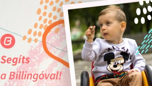 Fogjunk össze Leviért! 1 éves Billingo előfizetés ajándékba a támogatásodért!